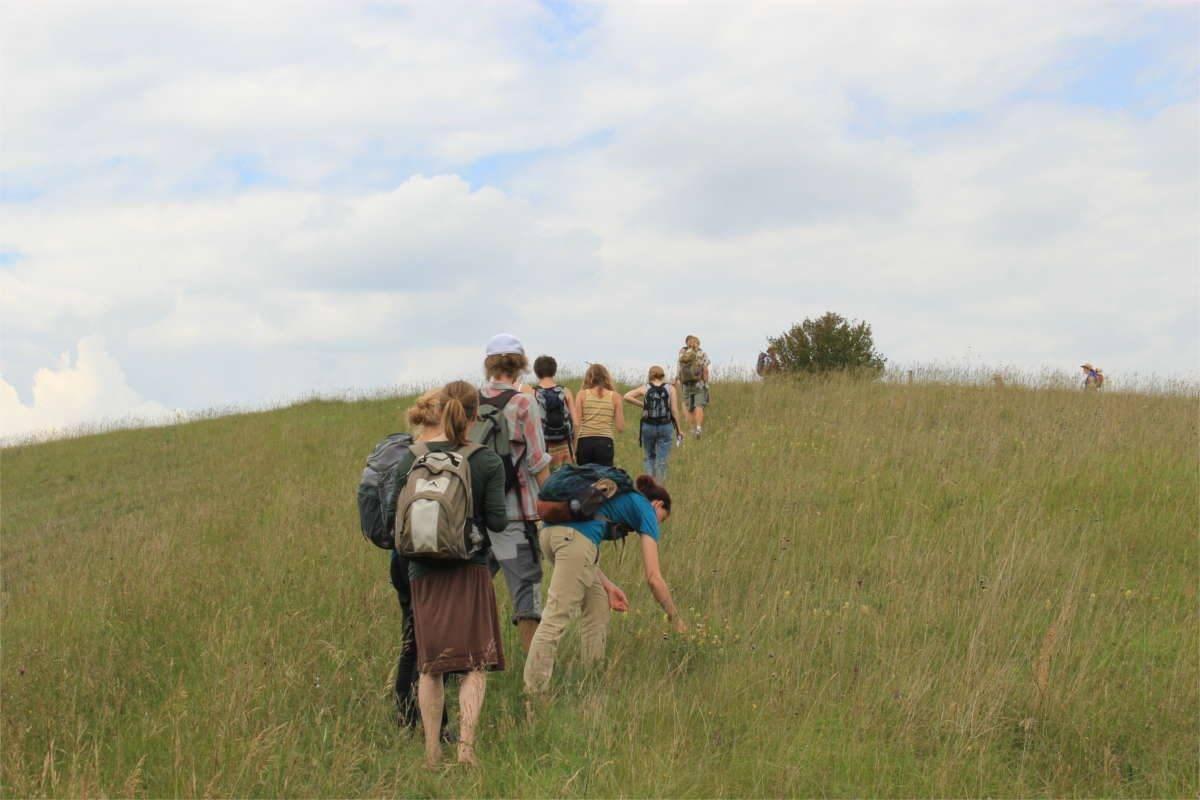 Wildkräuterwanderungen und Exkursionen