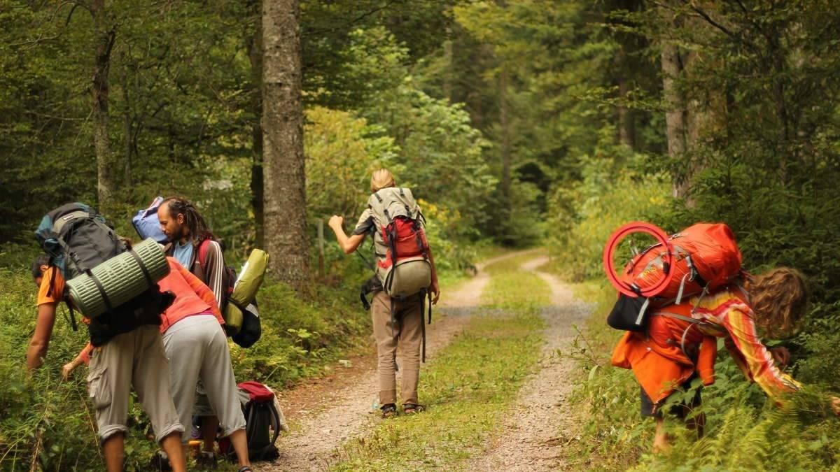 Survival-Wanderung: Mit Essbarem aus der Natur