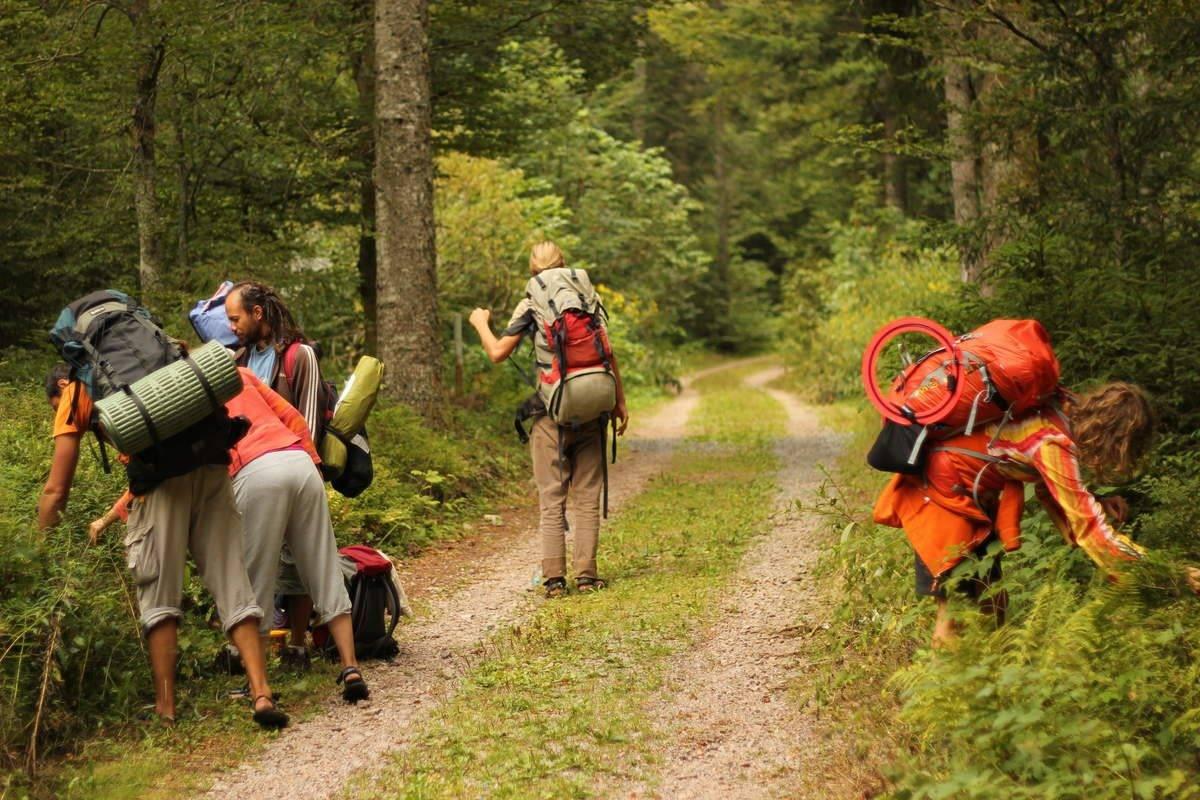 Survival-Wanderung