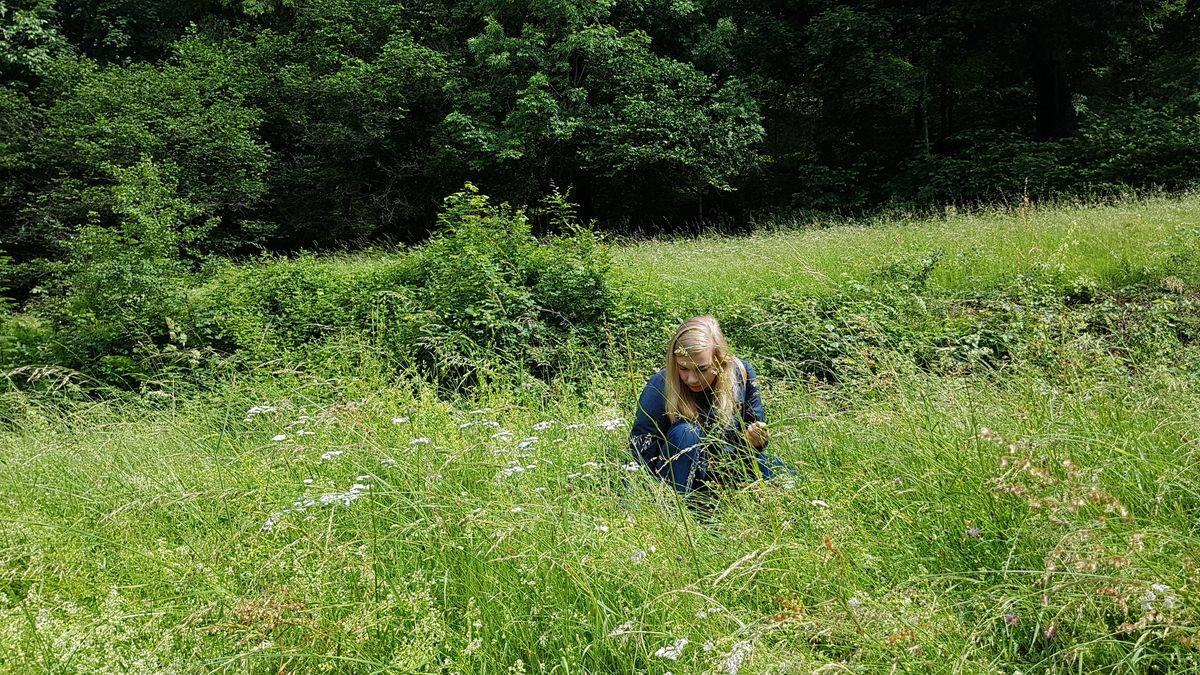 Wildkräuterwanderung und Picknick im Schwarzwald