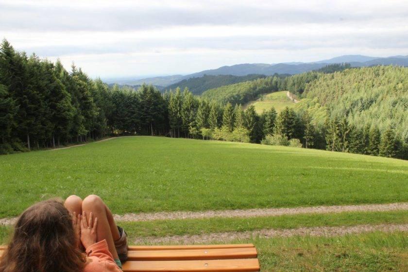 Sicht auf Hornisgrinde im Schwarzwald