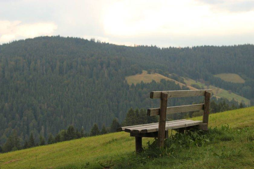 Bank im Schwarzwald