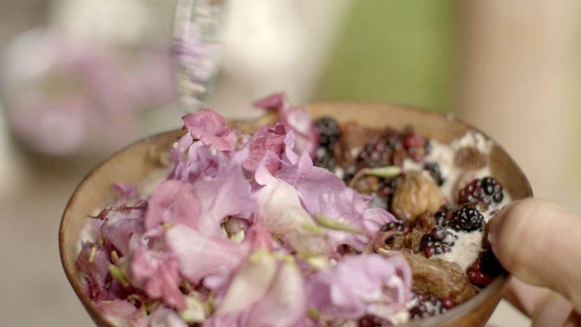 Blüten & Beeren